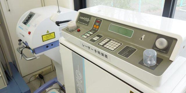 渡邊動物病院 高出力レーザー