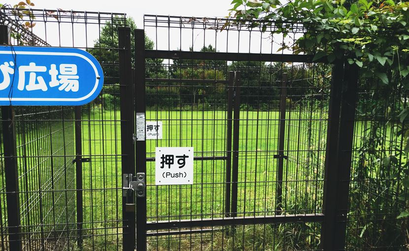 斉藤牧場動物病院のドッグラン