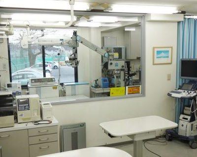 渡邊動物病院 診察室