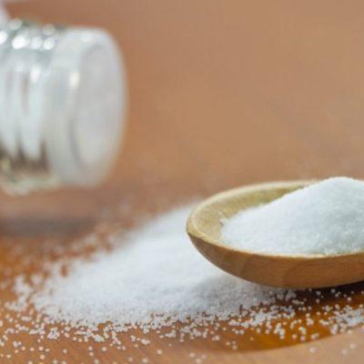 犬猫と食塩