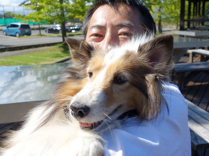 二代目オフィス犬のハッピー